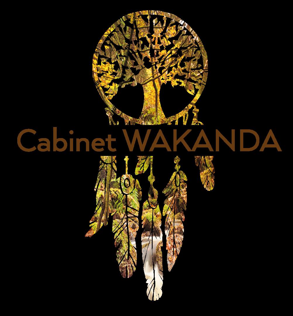 Cabinet Wakanda Annecy