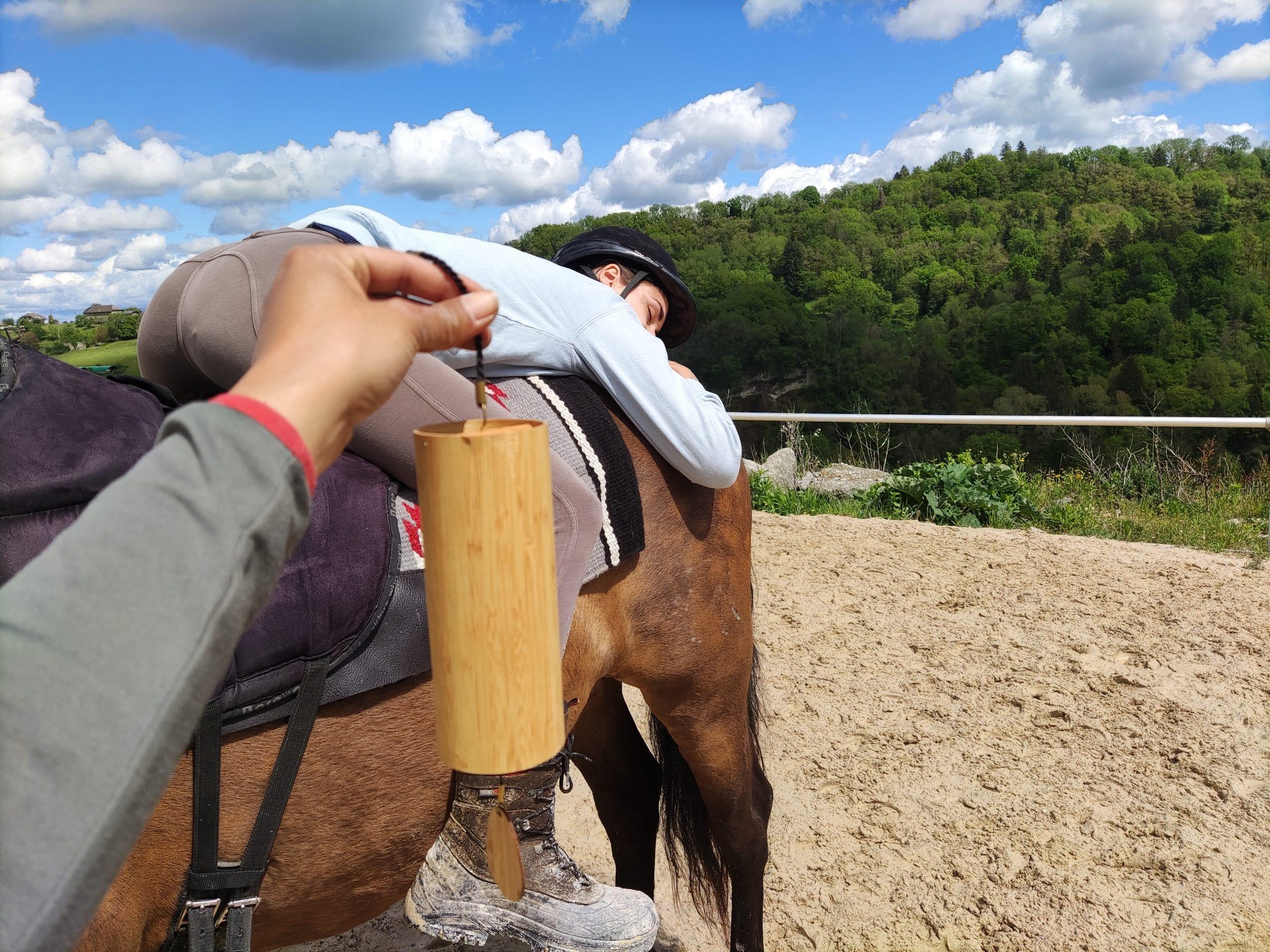 equicoaching-horse-coaching-annecy-aix-les-bains