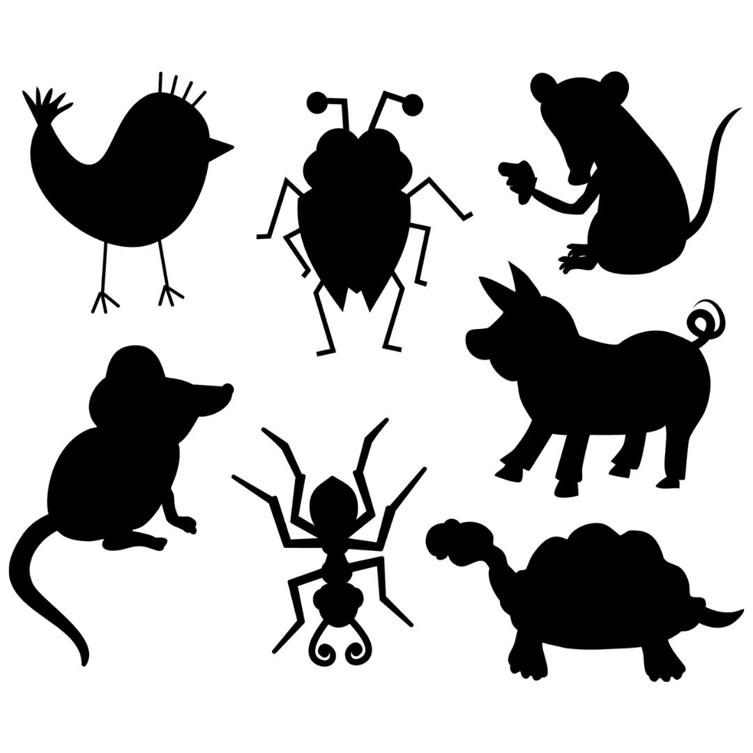 animaux-totem-3-annecy-meythet-cabinet-wakanda